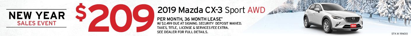 Model CX-3