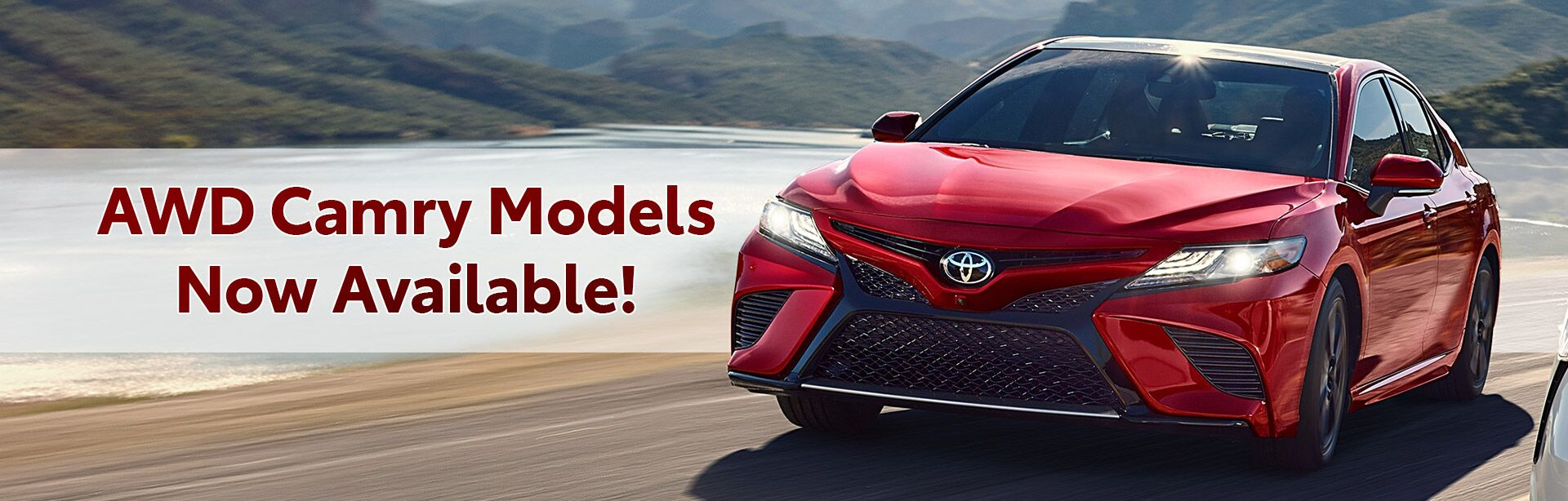 AWD Camry Models