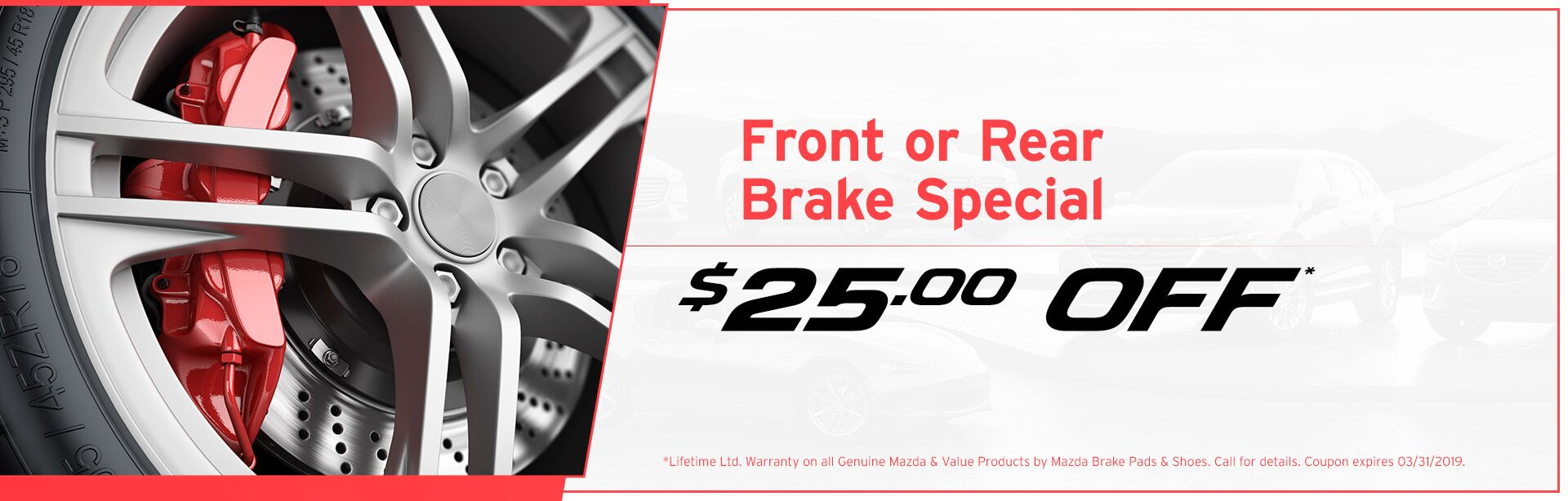 Front or Rear Brake Special