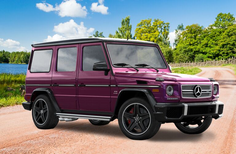 2018 Mercedes-Benz G-Class in plum