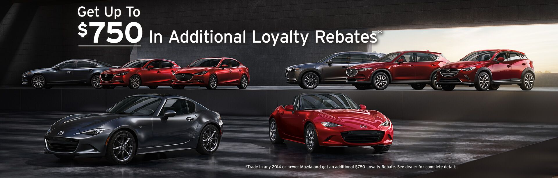 Loyalty Rebates