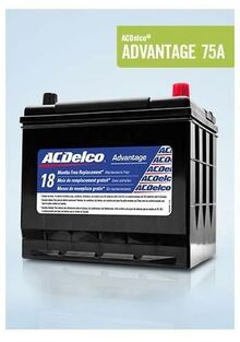 ACDelco® ADVANTAGE 75A