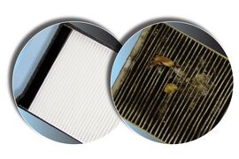 $7 off Cabin or Engine Air Filters