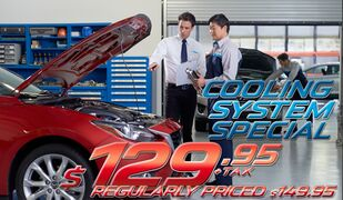 Coolant System Service