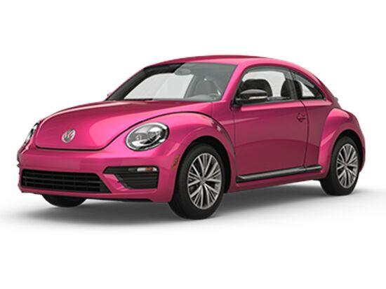 Beetle #PinkBeetle