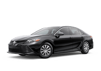 New Toyota Camry at Fallon