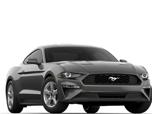 New Ford Mustang in Tampa