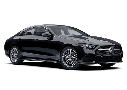 New Mercedes-Benz CLS 450 Wesley Chapel, FL