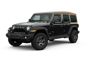 Jeep Wrangler Black and Specials in Rio Grande City
