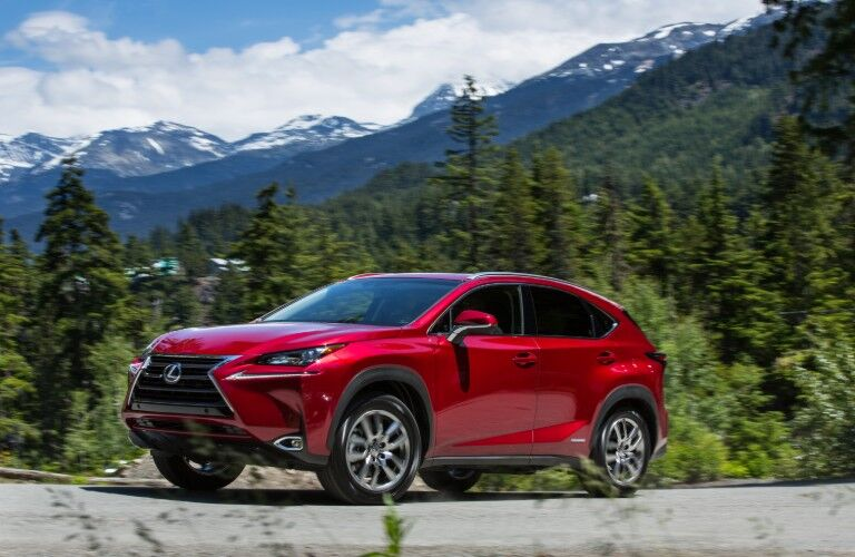 2021 Lexus NX in front of mountain