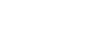 Dealer Network Trade logo