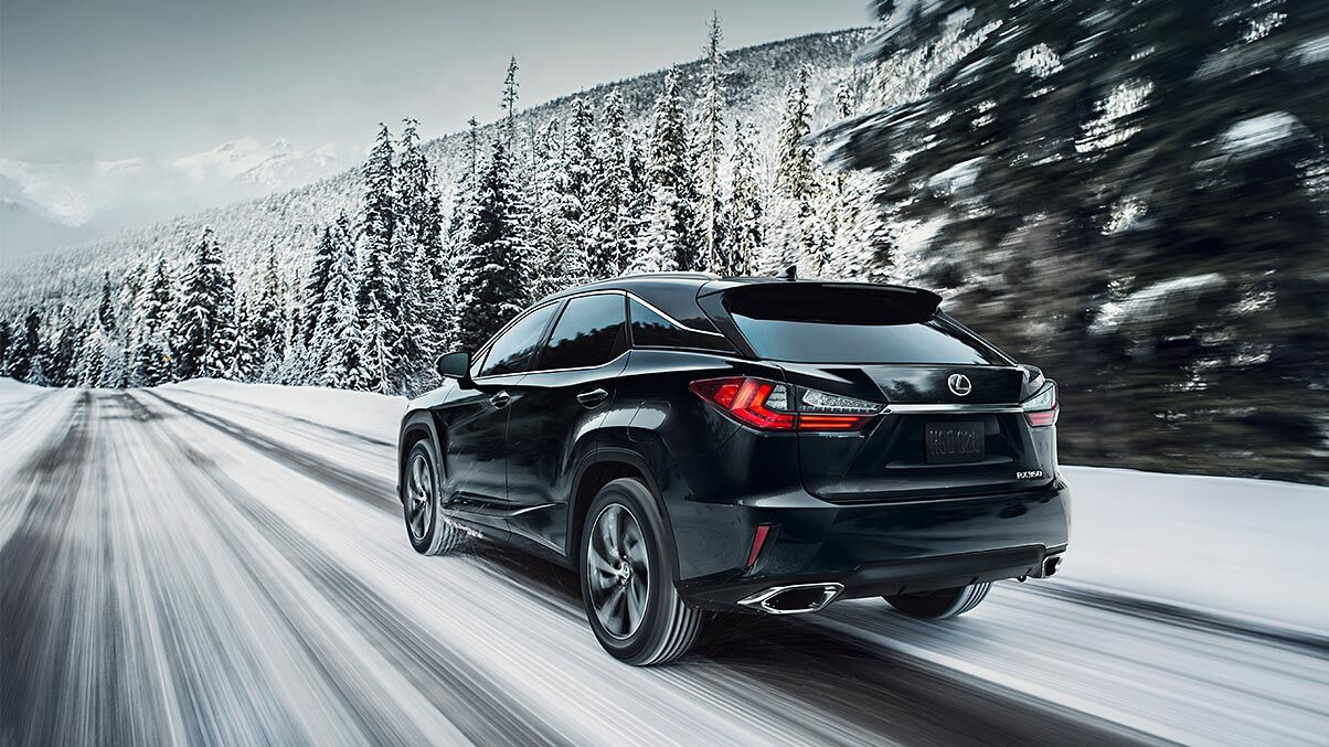 Black 2019 Lexus RX drives down a snowy road flanked by pine trees.