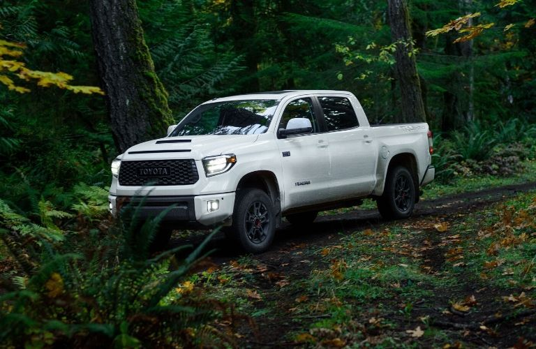 2020 Toyota Tundra TRD in woods