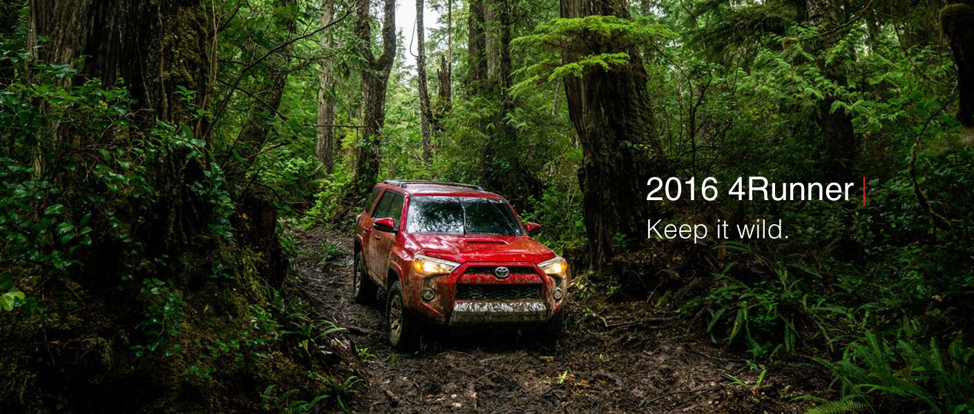 2016 Toyota 4Runner driving in the woods