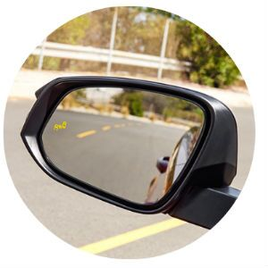 Does the 2017 Toyota RAV4 have a blind spot monitor?