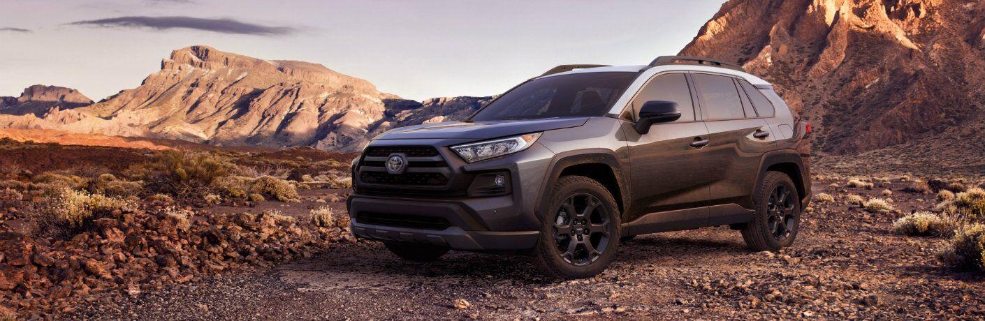 Gray 2020 Toyota RAV4 parked on mountain terrain