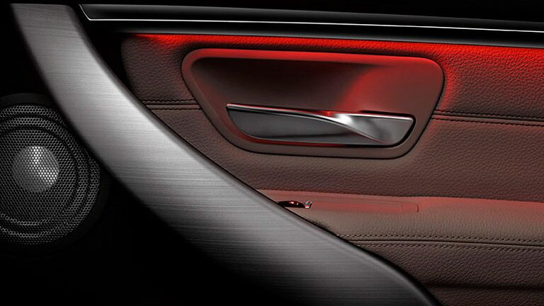 interior door handle and arm rest of the 2016 BMW 3 Series