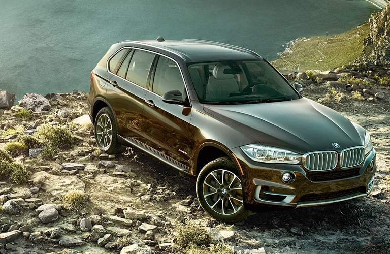 brown 2018 BMW X5 parked by a lake