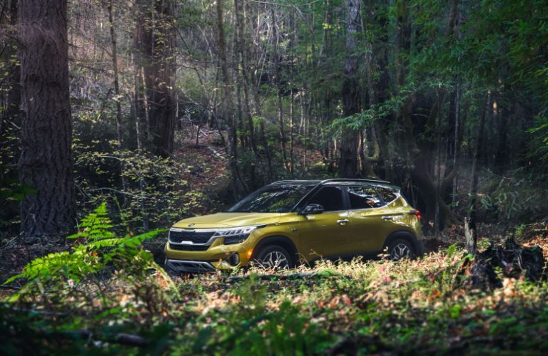 2021 Kia Seltos exterior shot with Starbright Yellow paint color parked in brush within a green forest