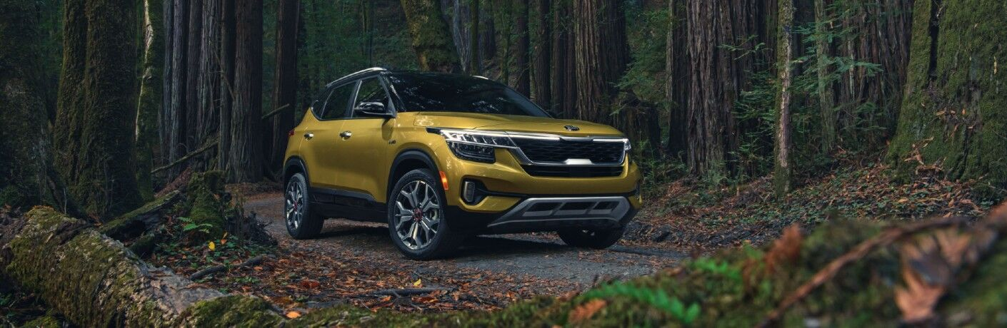 2021 Kia Seltos exterior shot with Starbright Yellow paint color parked in the middle of a dense forest near a fallen tree covered in moss