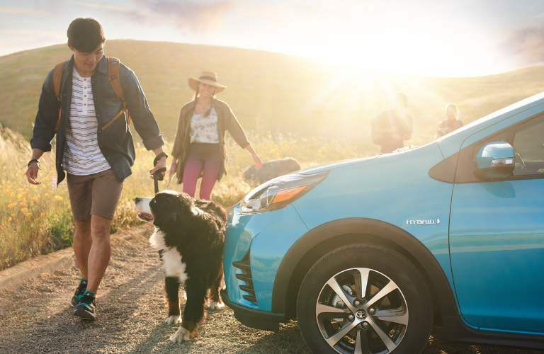 2018 prius c and dog