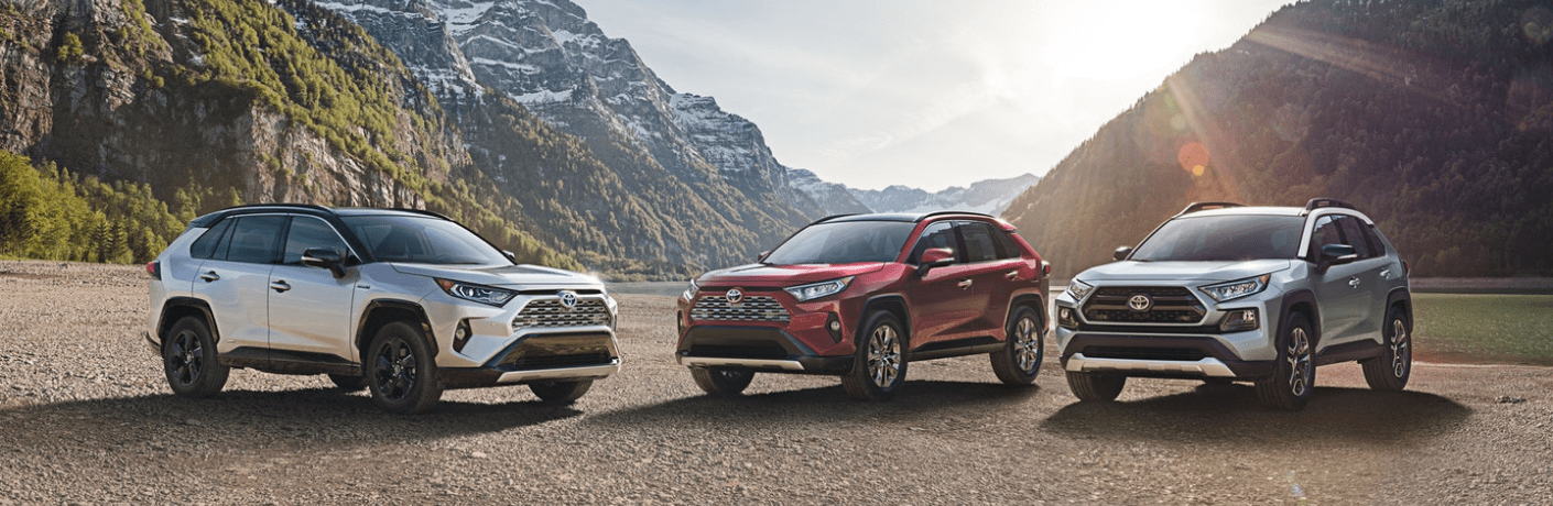 2019 Toyota RAV4 Hybrid models parked by mountain