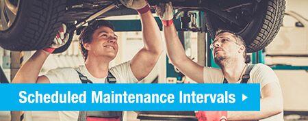 schedule maintenance at Speedcraft Volkswagen