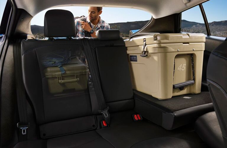 rear seats and cargo space of 2019 toyota prius inlcuding luggage