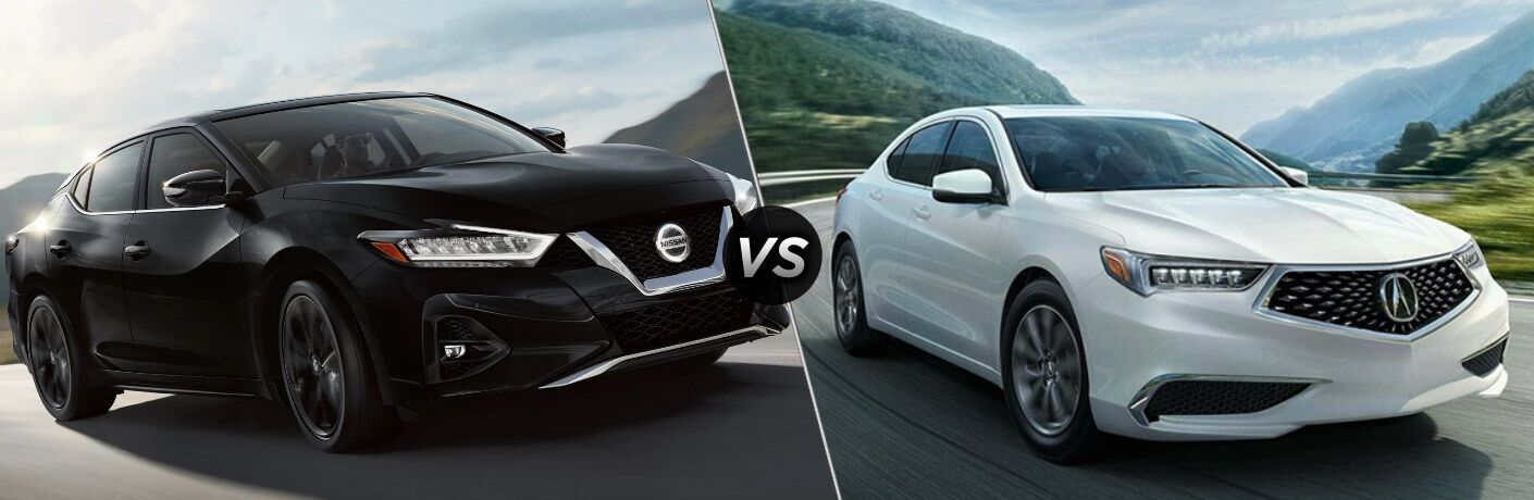 Black 2019 Nissan Maxima and white 2019 Acura TLX side by side
