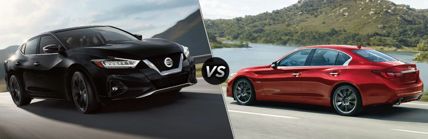 Black 2019 Nissan Maxima and red 2019 INFINITY Q50 side by side