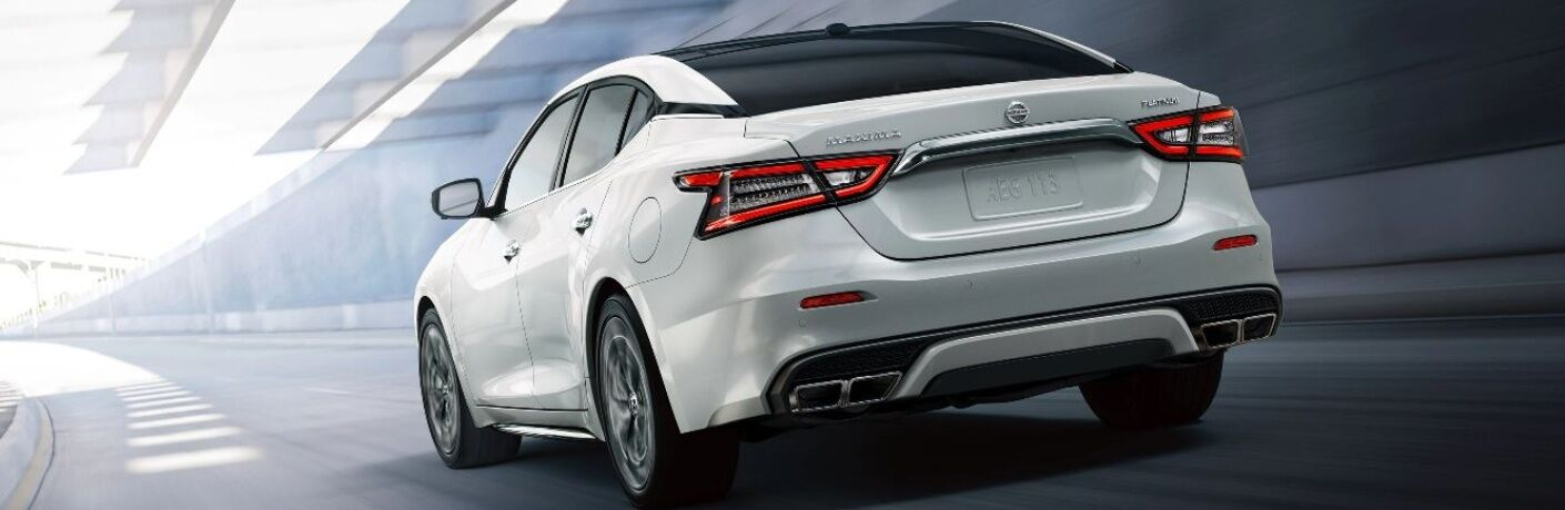 rear view of white 2020 Nissan Maxima