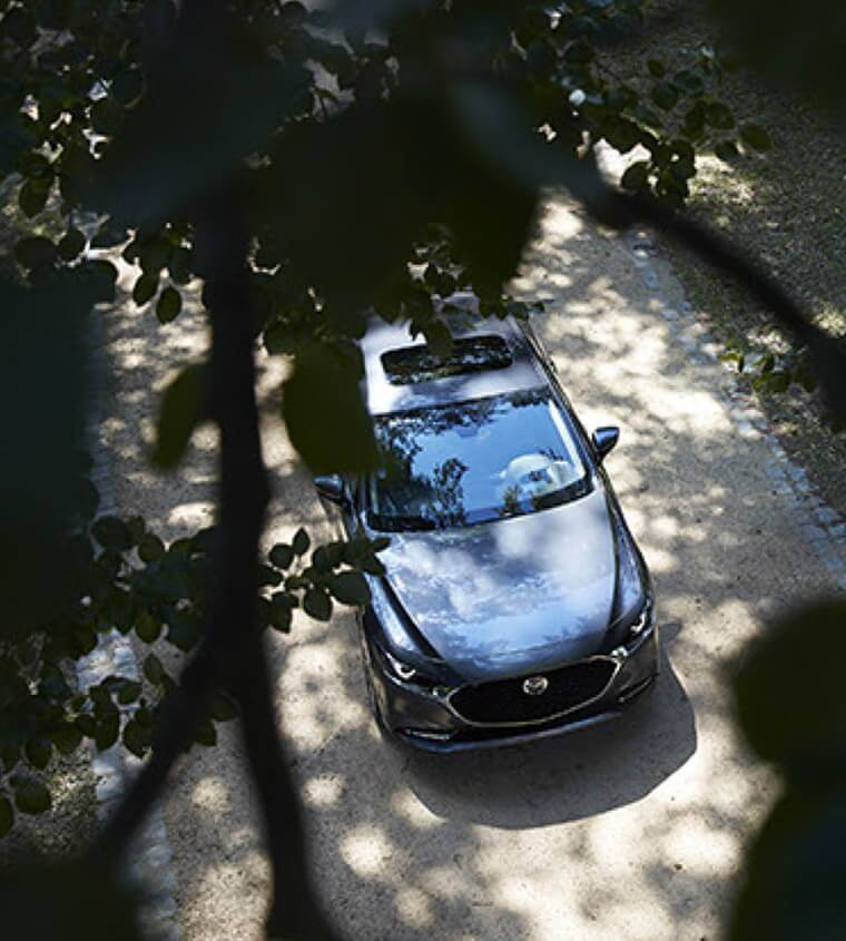 2019 Mazda3 viewed from above through tree branches