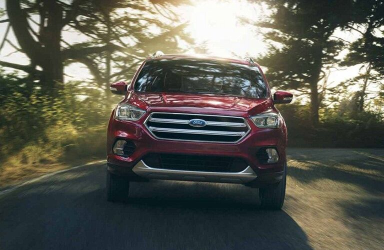 2019 Ford Escape driving down a road amidst leafy greenery and sunshine, exterior front view.