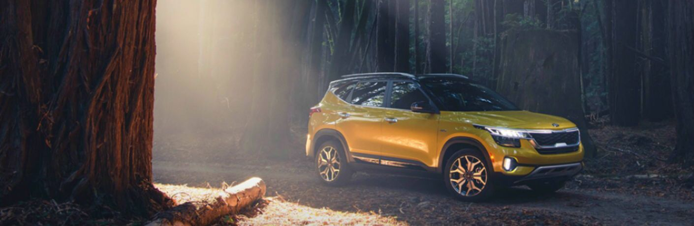 starbright yellow kia seltos in the woods