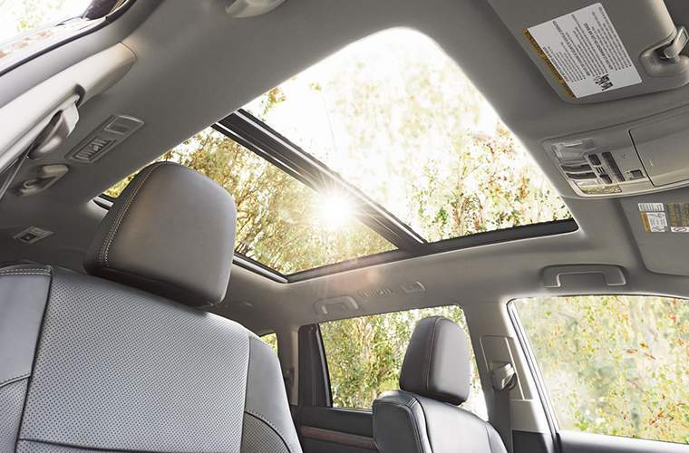 2018 Toyota Highlander sunroof looking to trees with sun shining through