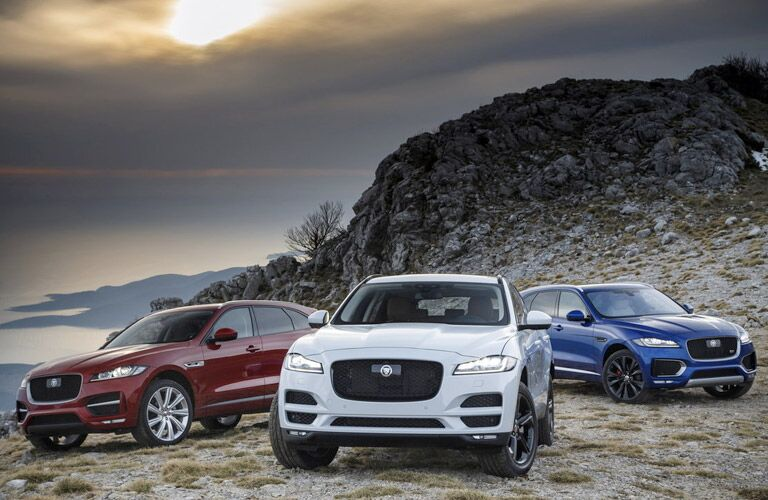 Red, White and Blue 2019 Jaguar F-PACE Models Parked on a Mountain
