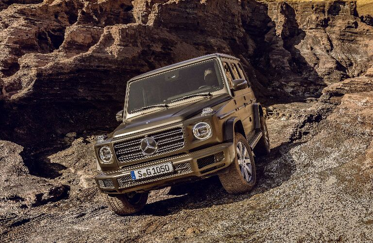 2019 Mercedes-Benz G-Class in Brown