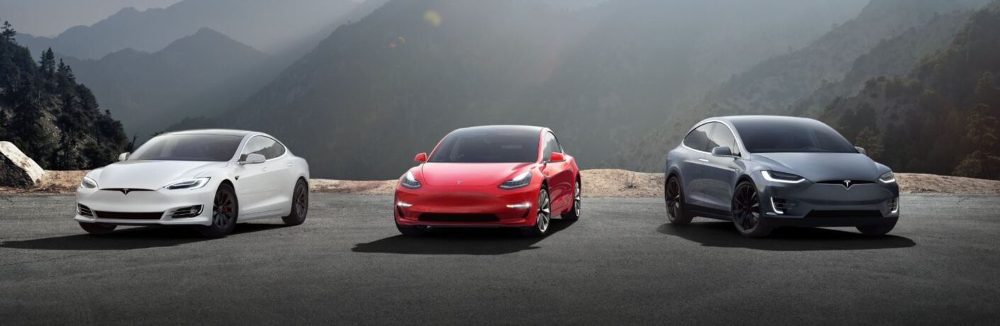 Exterior view of a white Tesla Model S, a red Tesla Model 3, and a grey Tesla Model X parked near a wilderness overlook