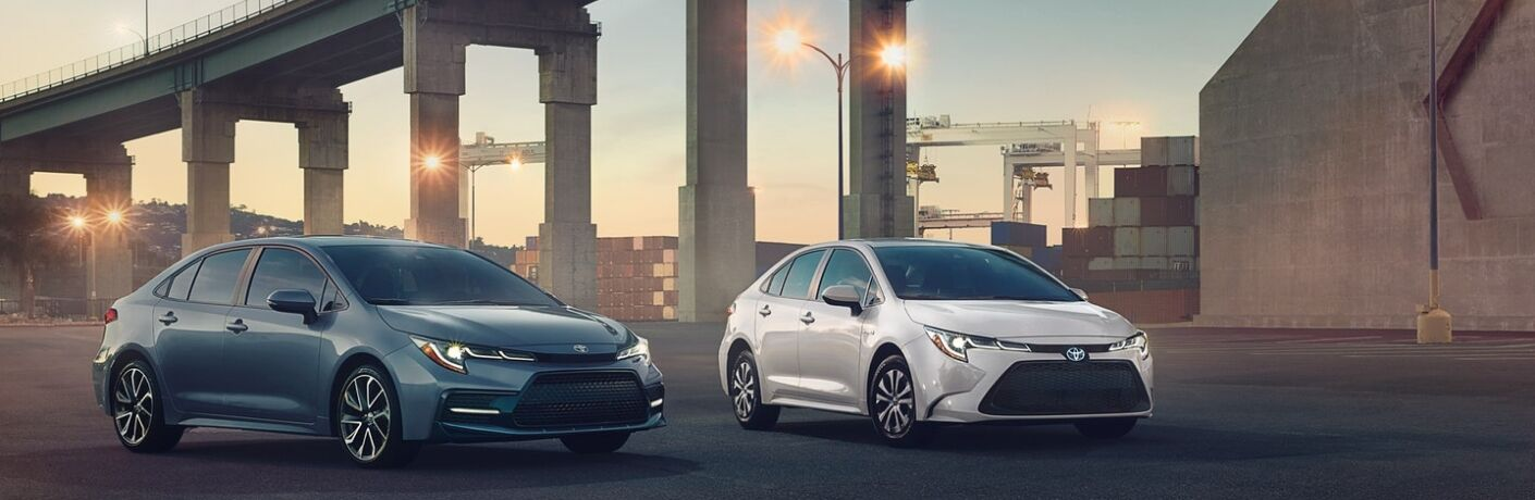 Blue and White 2020 Toyota Corolla Models Next to a Bridge