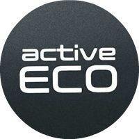 2016 Kia Soul Active Eco System