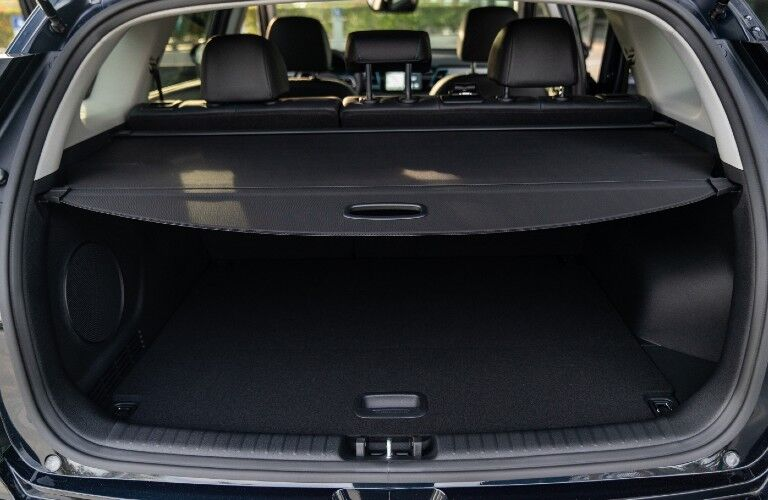 Cargo area in 2020 Kia Niro EV