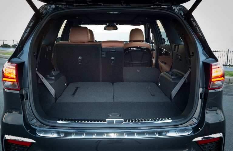 Cargo Area of Black 2019 Kia Sorento