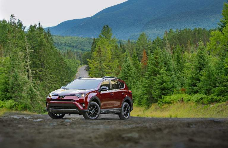 2018 Toyota RAV4 in the woods