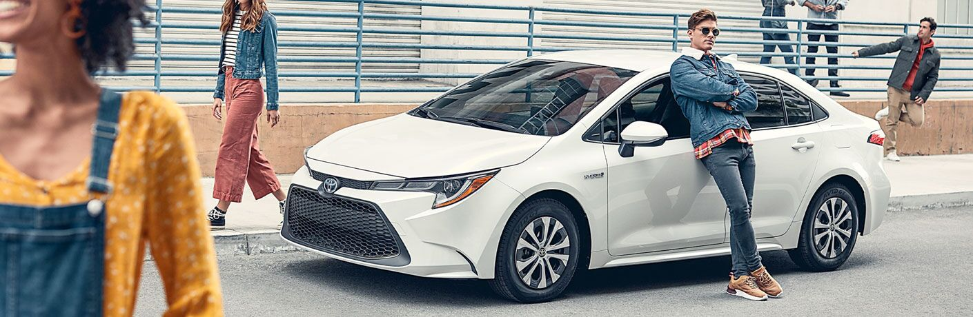 Man leaning against a white 2020 Toyota Corolla Hybrid