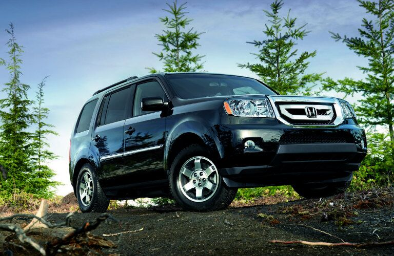 2009 Honda Pilot in the forest