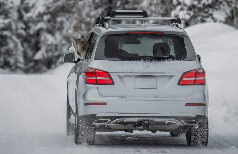 White 2017 Mercedes-Benz GLS Rear Exterior Driving in Snow with Dog Hanging Head out Window