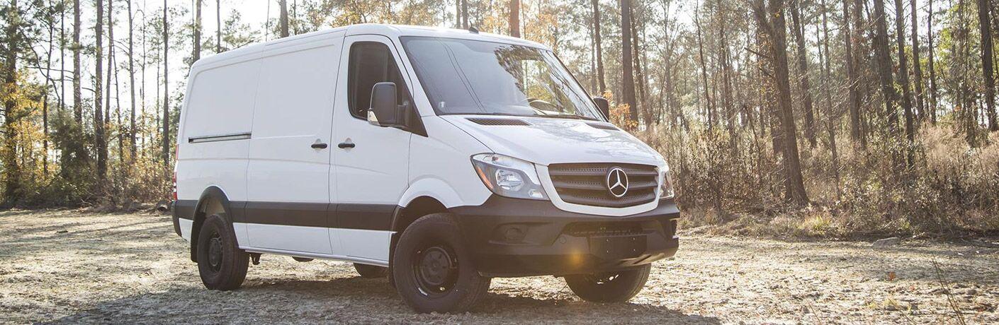 2017 mercedes-benz cargo van in woods