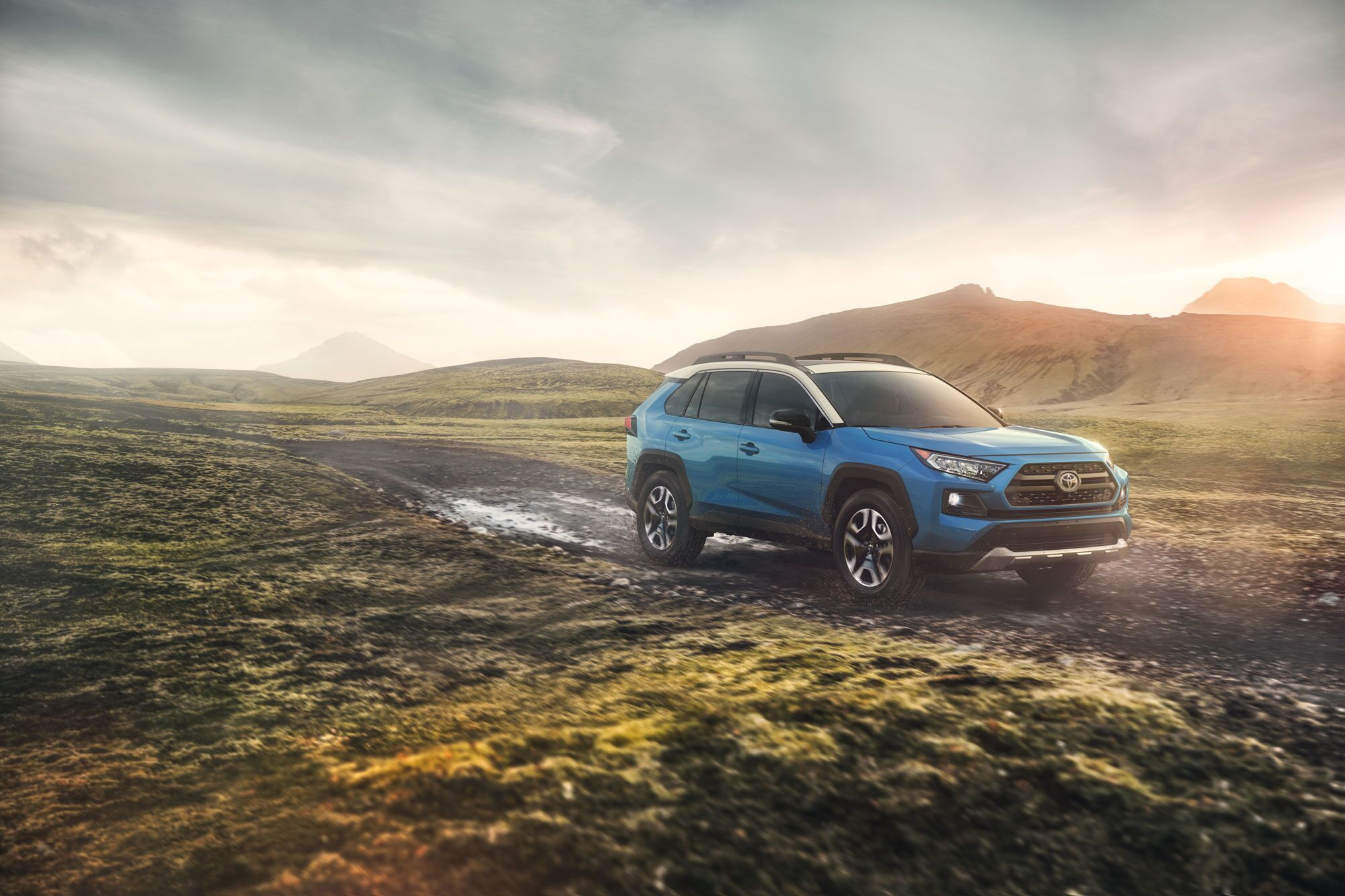 Image of a blue 2019 Toyota RAV4 parked in a prarie landscape.