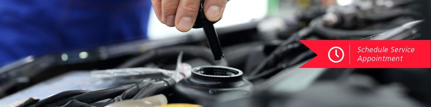 "A hand delicately removes the cap covering some kind of fluid container under the hood of a vehicle. White text on a red banner says, ""Schedule Service Appointment."""