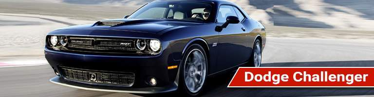 2017 Dodge Challenger muscle car with a red name label